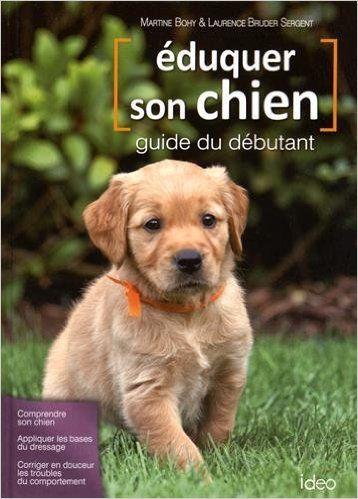 Assurance Chien Catégorie 2 - Astuces secrètes - Les bases de l'éducation canine - Comment y arriver ?