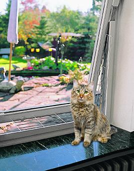 grille de protection pour fenêtre