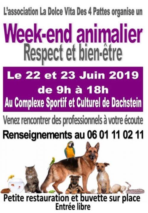 affiche week-end animalier par La Dolce Vita des 4 pattes